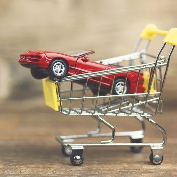 walser-lieferant-was-wir-kaufen
